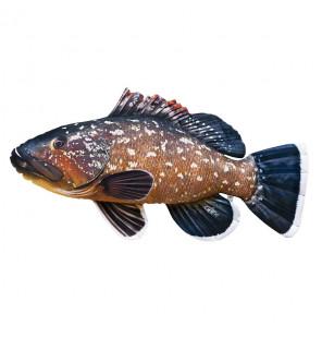 Gaby Fischkissen Zwergbarsch Giant 100cm, Plüschfisch, Stofftier Gaby Big Fish
