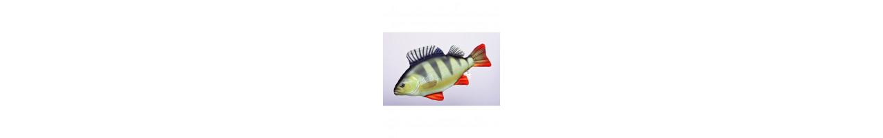 Große Fische - Plüschfische - Angelbedarf - JJ-Fishing - Online Shop